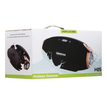 Купить КОЛОНКА HOPESTAR H25