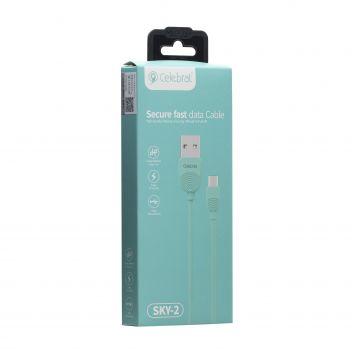Купить USB CELEBRAT SKY-2M MICRO