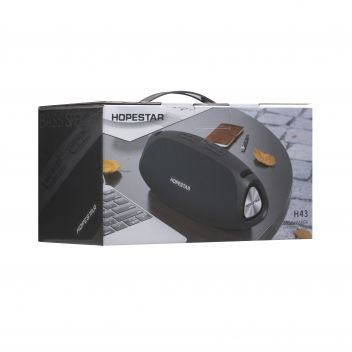 Купить КОЛОНКА HOPESTAR H43