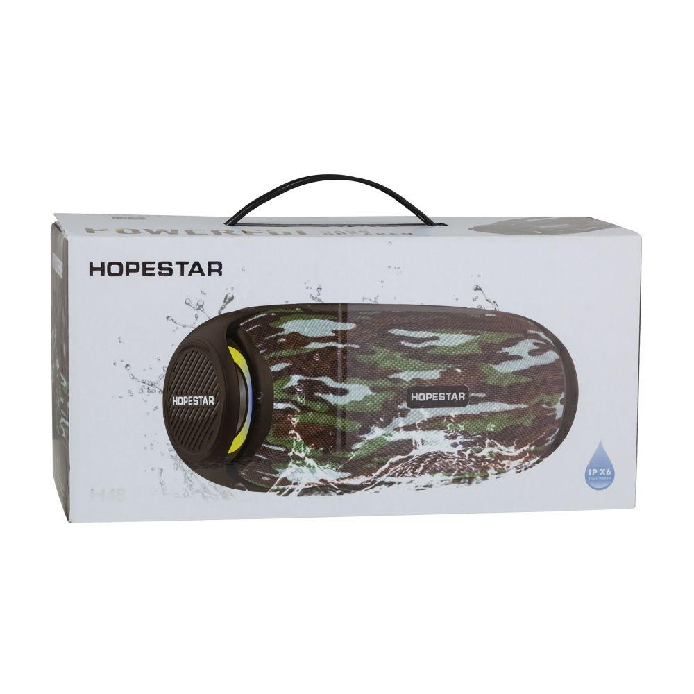 Купить КОЛОНКА HOPESTAR H48_2