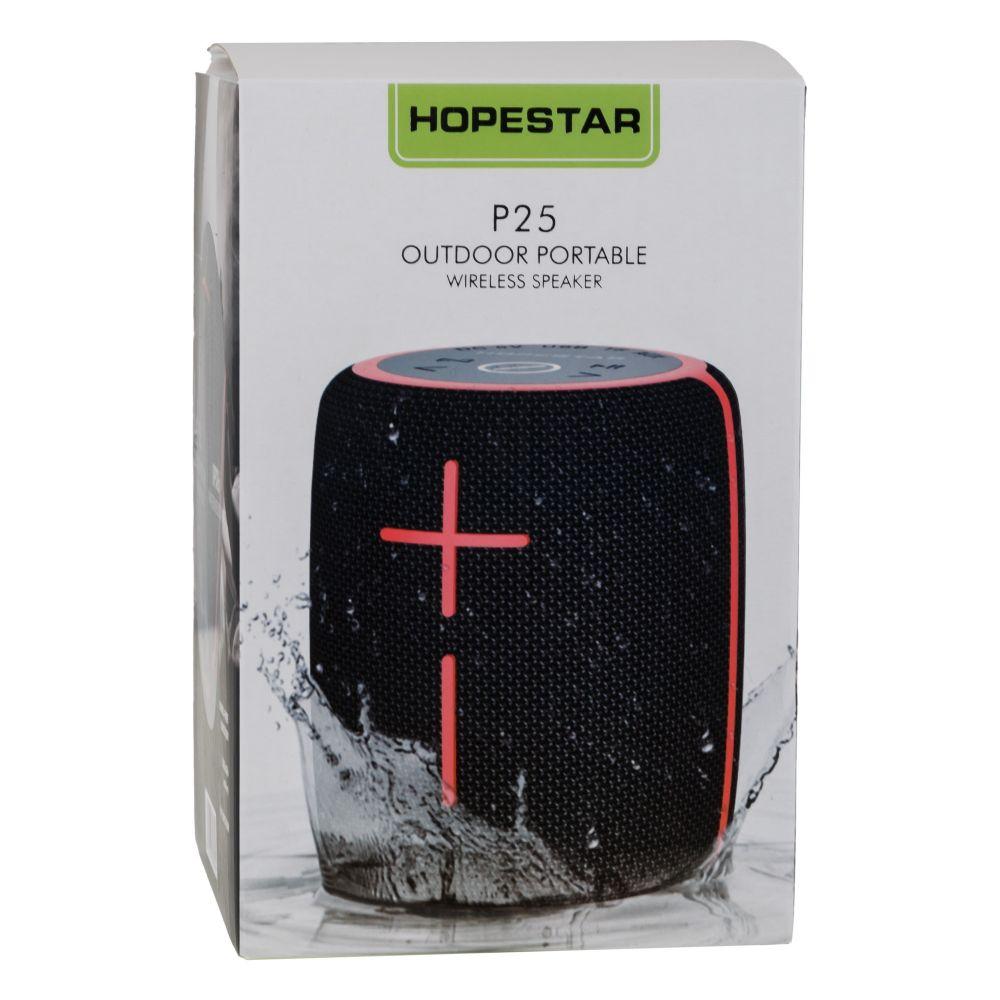 Купить КОЛОНКА HOPESTAR P25_2
