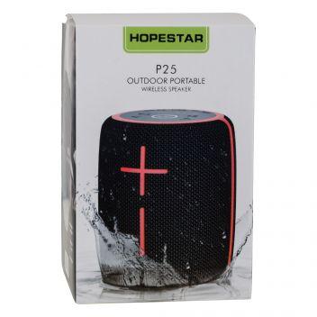 Купить КОЛОНКА HOPESTAR P25